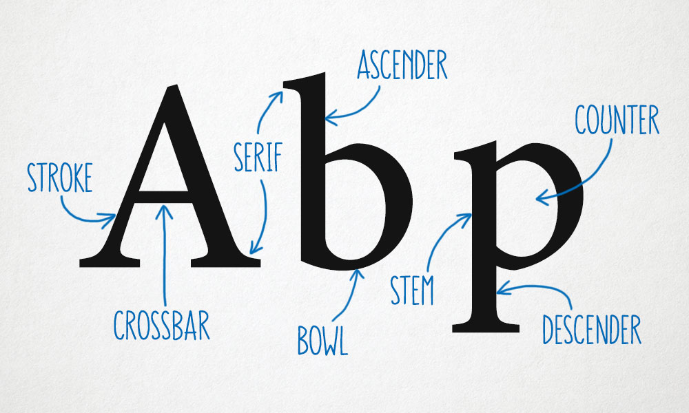 Vocab #2: Anatomy of Letter Parts