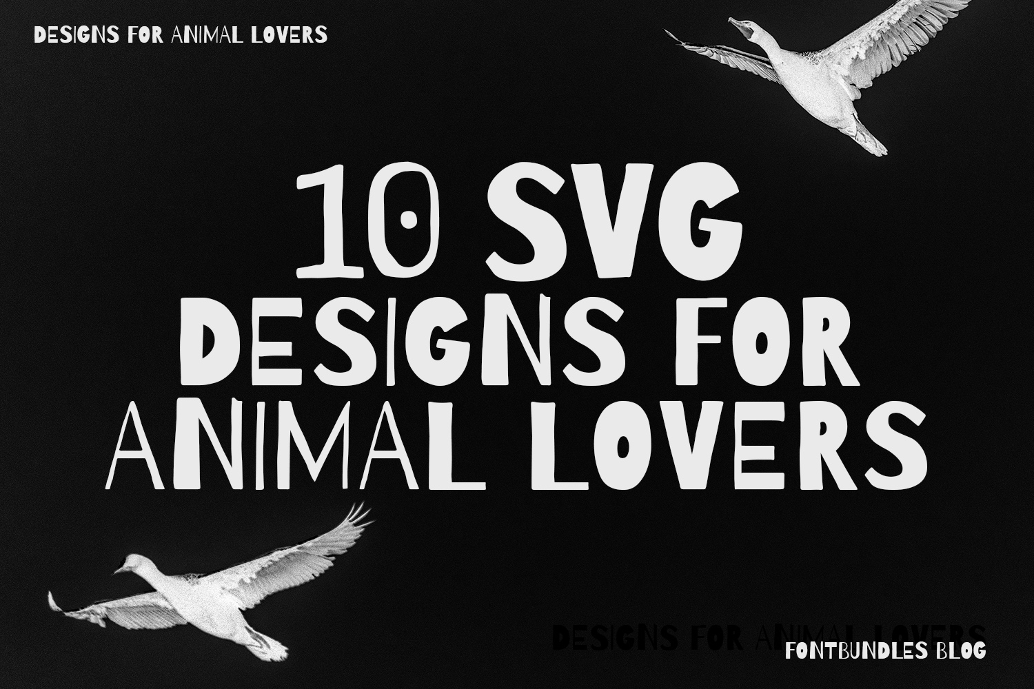 10 SVG Designs for Animal Lovers