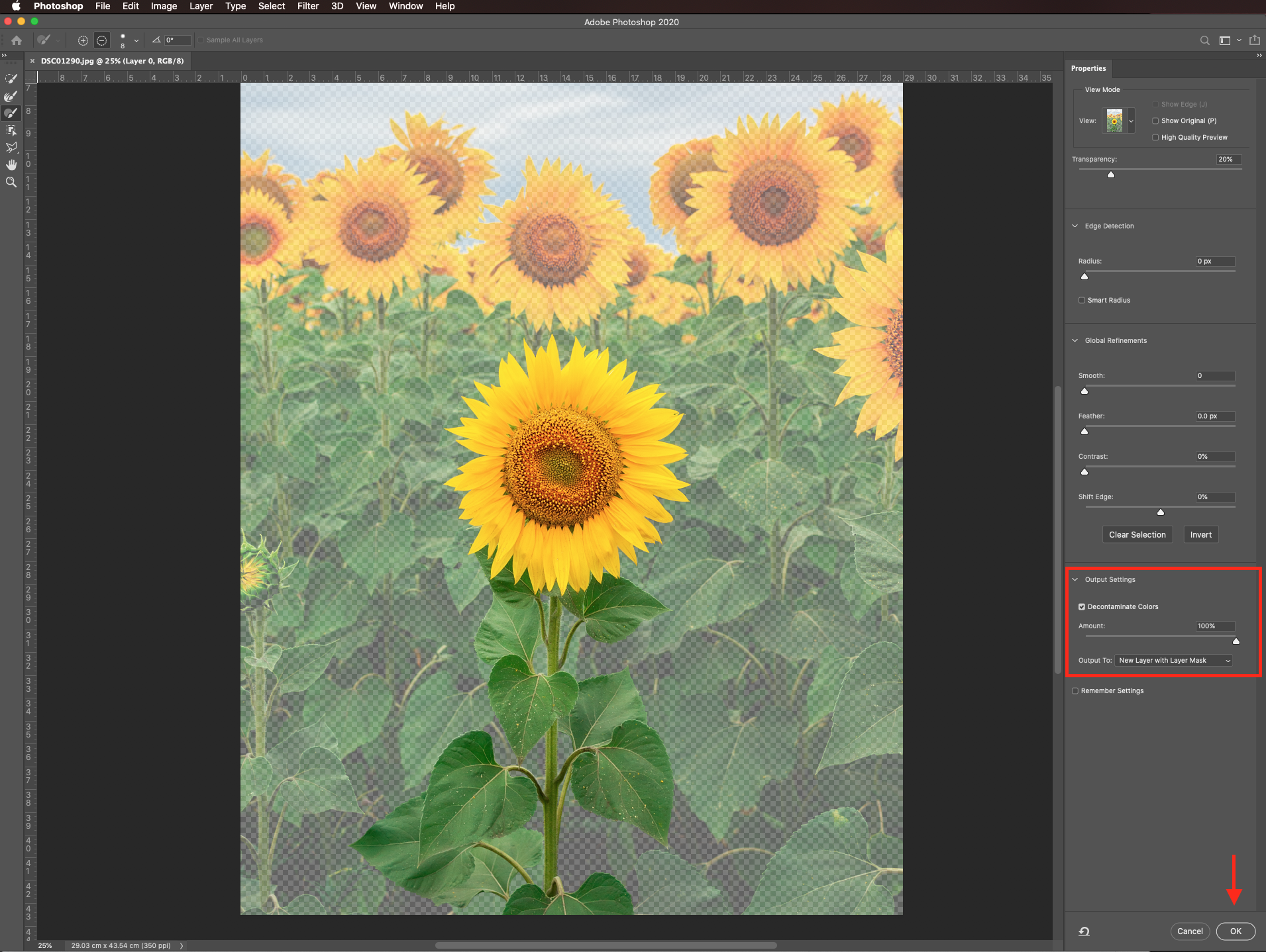 Output to new layer with mask in Photoshop
