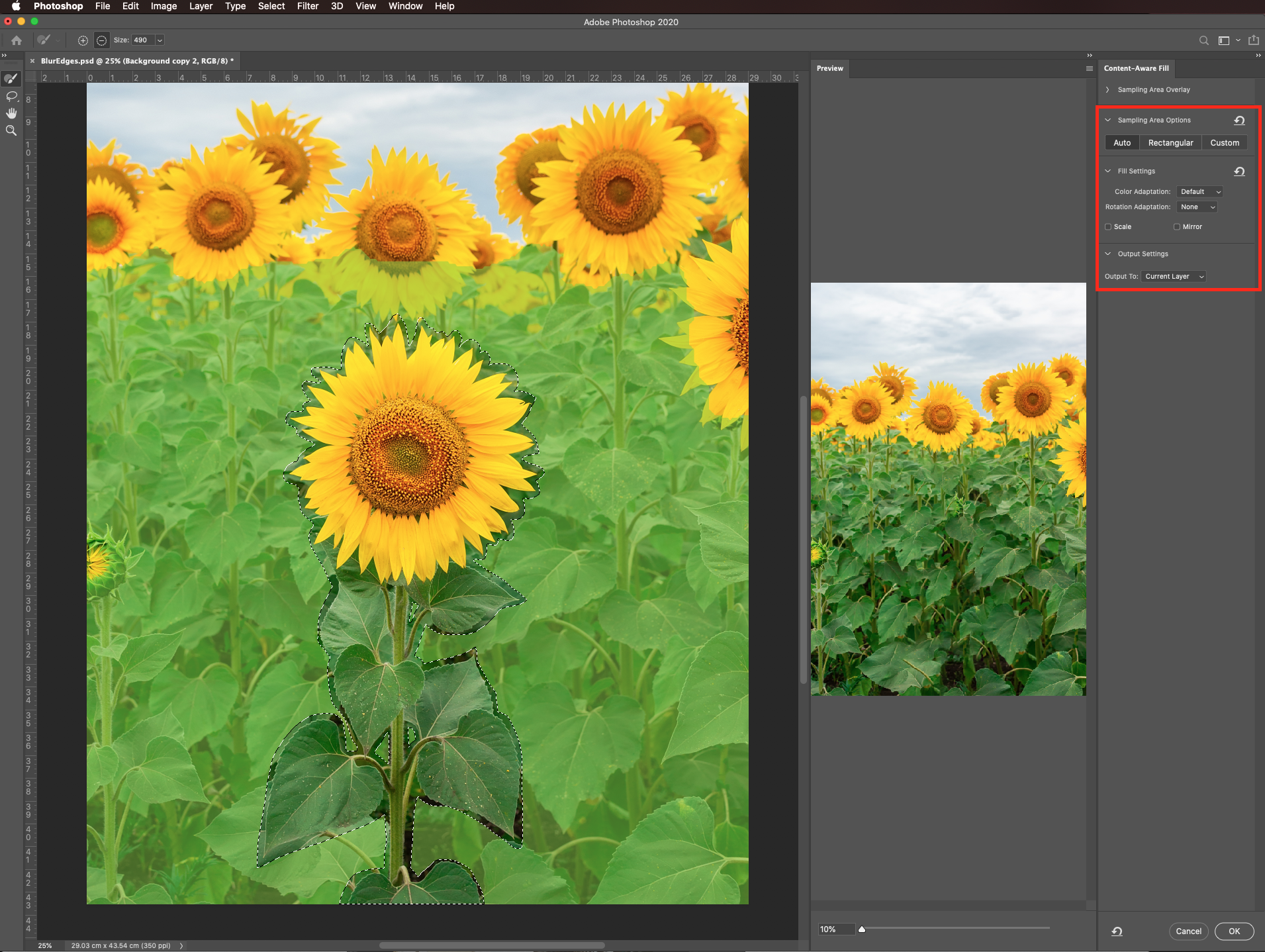 Output to current layer in Photoshop