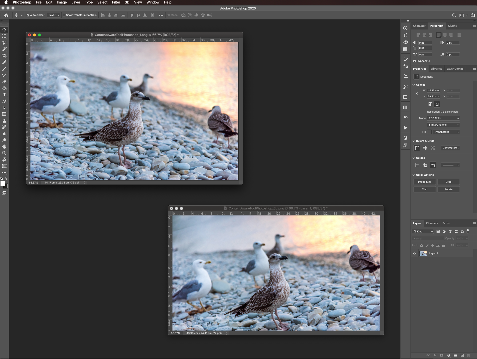 Before and after crop in Photoshop