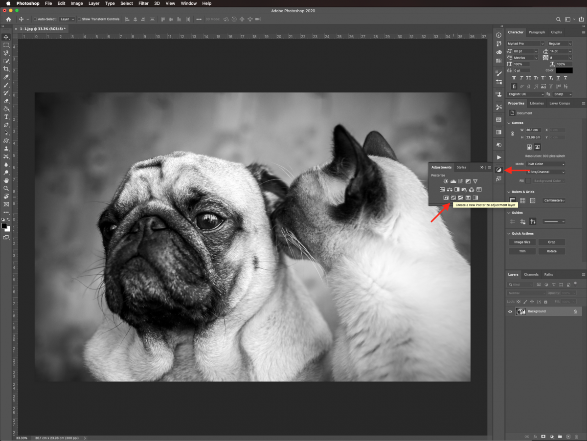 Posterize adjustment layer in Photoshop