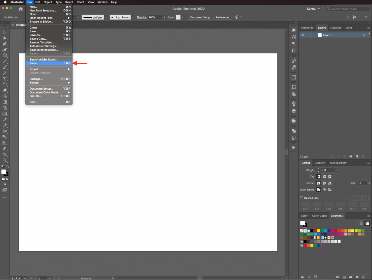Place image in Illustrator