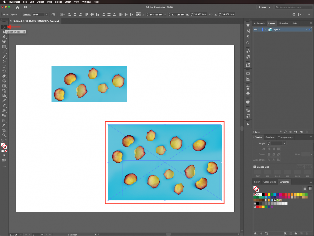 Selection tool in Illustrator