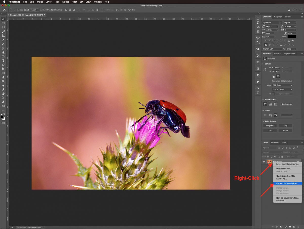 Convert to smar object in Photoshop